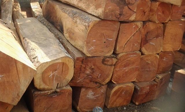 nội thất gỗ tự nhiên 6